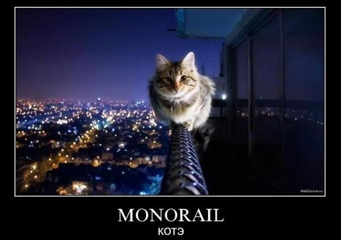 Monorail котэ