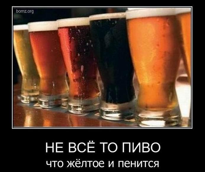 Не всё то пиво