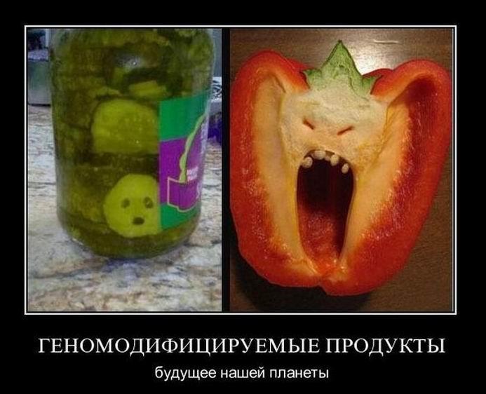 Генномодифицируемые продукты