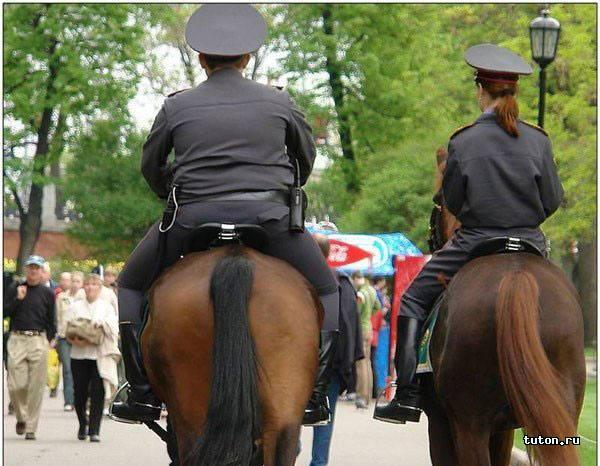 Наша любимая полиция
