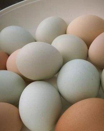 Яйце-лом